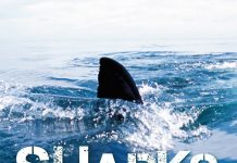 Sharks Never Sleep Audiobook Free Download & Listen